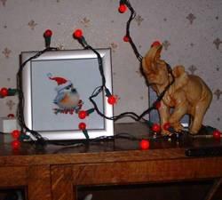 Chickadee_lights_cropped_450