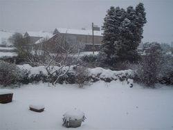 Snowinarnside002